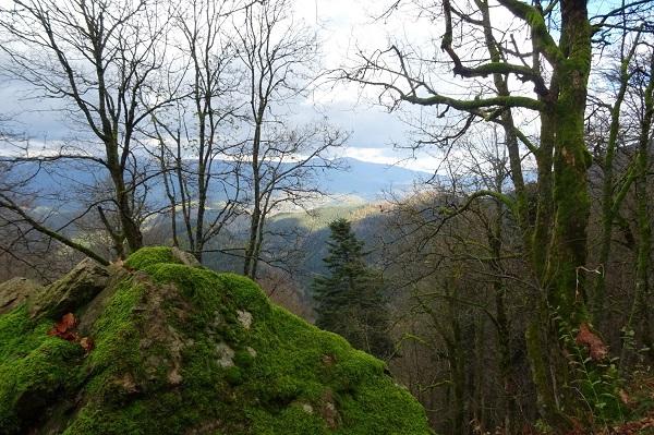 Vosges2018
